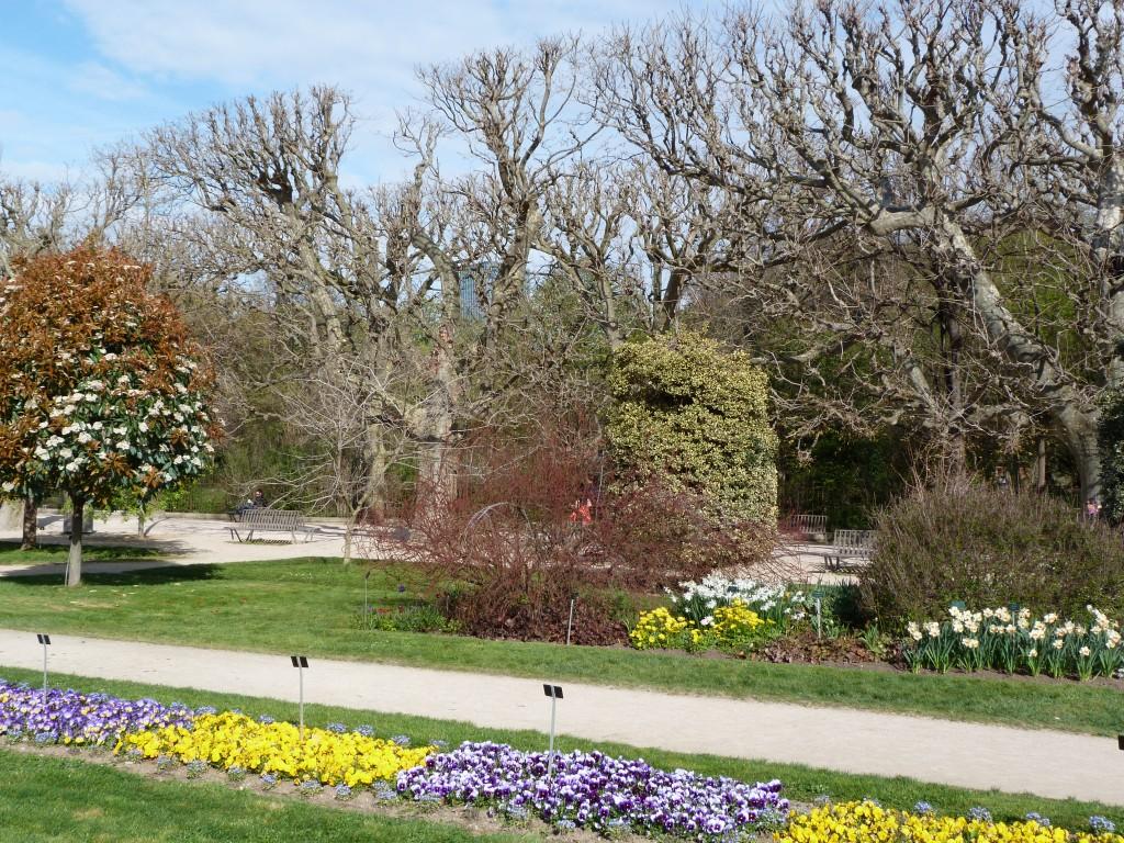 Jardin-des-plantes-Paris (12)
