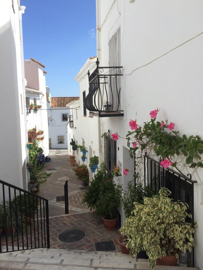 Malaga-Andalousie-ESpagne-Mijas (34)