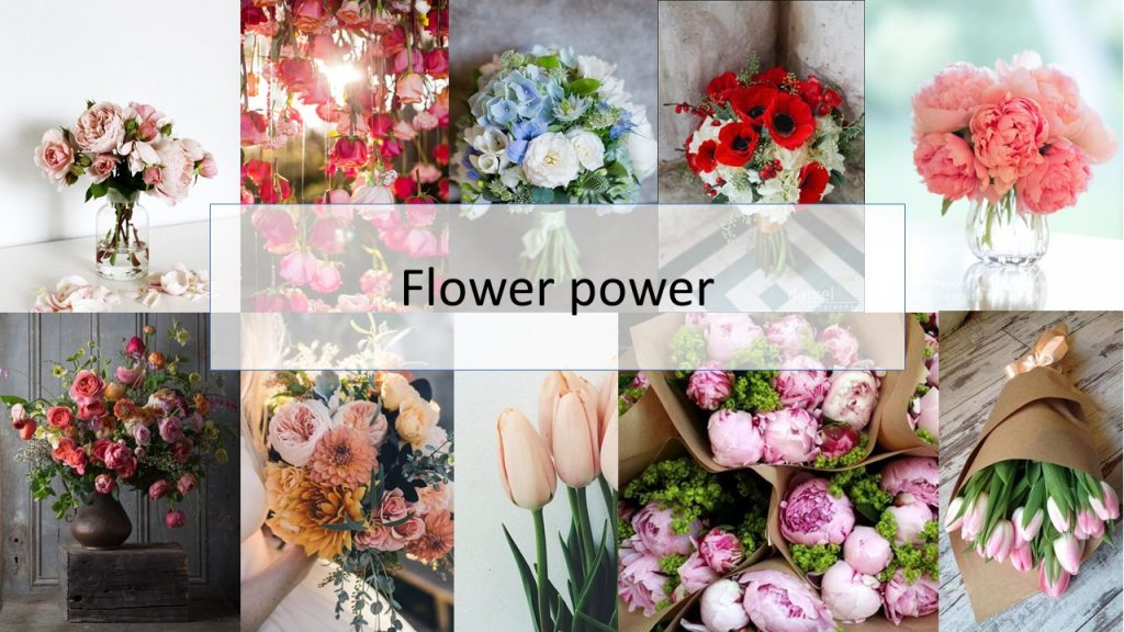 06.Flowers power